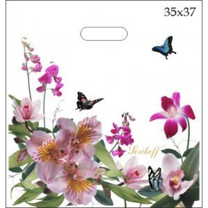 35x37 Цветы