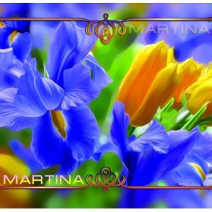 37*35 Мартина