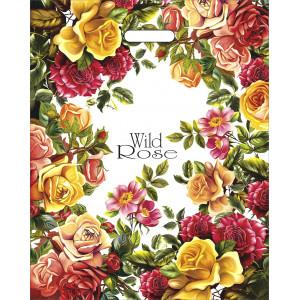 40x50 Дикая роза 2